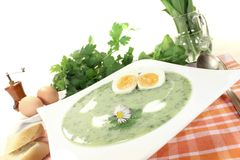 Fresh herbs soup with eggs Stock Image