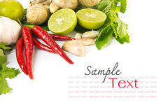 Fresh herbs and spices Royalty Free Stock Image