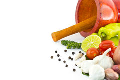 Fresh herbs and spices. With wooden mortar Stock Photography