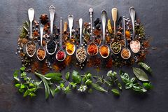 Herbs and spices on black board royalty free stock images
