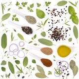 Fresh herbs and spices isolate on white Royalty Free Stock Photos