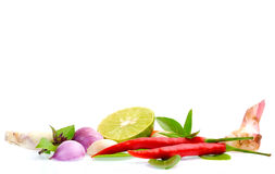Fresh herbs and spices isolated on white background Royalty Free Stock Images