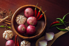 Fresh herbs and spices, onion slices and garlic, and hot peppers scattered Stock Photography