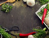 Fresh herbs and  spices on a rustic wooden table Royalty Free Stock Image