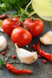 Fresh herbs and spices tomato , garlic, pepper Royalty Free Stock Image