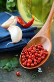 Fresh herbs and spices tomato , garlic, pepper Stock Images
