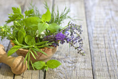 Fresh herbs and spices on vintage wooden boards Stock Photo