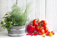 Fresh herbs and spices on white planks Stock Photos