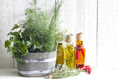 Fresh herbs and spices on white planks Stock Photo