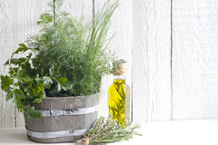 Fresh herbs and spices on white planks Royalty Free Stock Photos