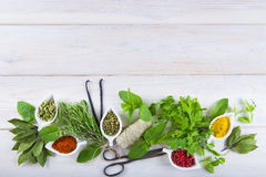 Fresh herbs and spices on a white wooden background Royalty Free Stock Photography