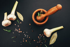Fresh herbs and spices in wooden mortar Royalty Free Stock Images