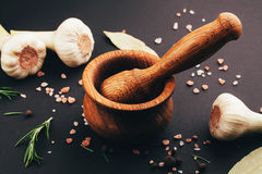 Fresh herbs and spices in wooden mortar Stock Photography
