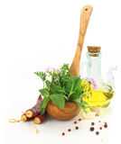 Fresh herbs and spices Stock Image