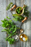 Fresh herbs and spices on wooden table Stock Photos