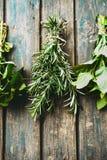 Fresh herbs on table royalty free stock photos