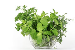 Fresh herbs, thyme mint parsley Royalty Free Stock Image