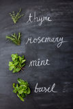 Fresh herbs, thyme, rosemary, mint, and basil Royalty Free Stock Photography
