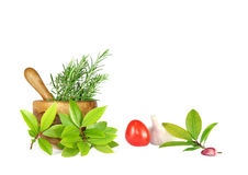 Fresh Herbs, Tomato and Garlic Royalty Free Stock Image