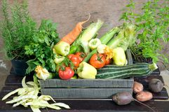 Fresh herbs and vegetables Stock Photos
