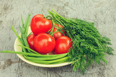 Fresh herbs and vegetables, tomatoes; onions; dill Stock Images