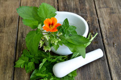 Fresh herbs vitamins Royalty Free Stock Images