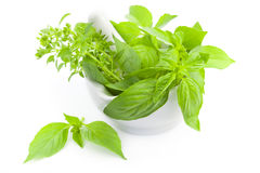 Fresh herbs whith mortar and pestle Royalty Free Stock Images