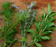 Fresh Herbs On Wood Background Royalty Free Stock Photography