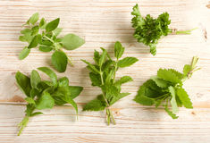 Fresh herbs. On a wooden background Royalty Free Stock Photos