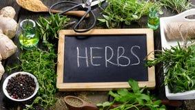 Fresh Herbs Stock Image