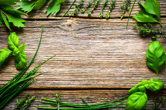 Fresh herbs on wooden background Royalty Free Stock Photo