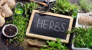 Fresh Herbs Royalty Free Stock Photos