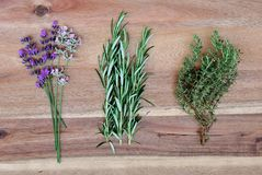 Fresh herbs on a wooden background, purple and rose lavender, rosemary and thyme, flat lay, top view, concept of organic kitchen. Ingredients or aromatherapy stock photography