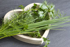 Fresh herbs in wooden heart Royalty Free Stock Images