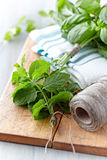 Fresh herbs on wooden kitchen board Royalty Free Stock Image