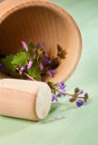Fresh herbs  in a wooden mortar Stock Images