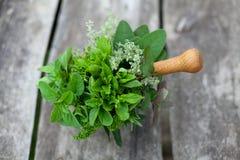 Fresh herbs in a wooden mortar Royalty Free Stock Photos