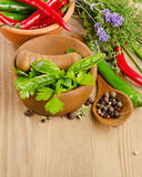 Fresh herbs on a wooden table Stock Photos