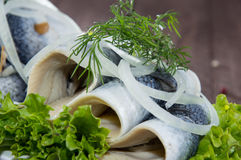 Fresh Herring Filet on a plate. Against wooden background Royalty Free Stock Photo