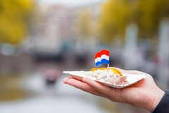 Fresh herring with onion and netherland flag on the water channel background in Amsterdam. Traditional dutch food. Traditional dutch food: herring fish with stock photography