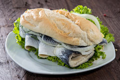 Fresh Herring with Onions on a baguette royalty free stock image