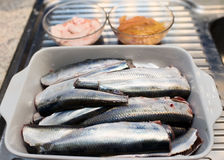 Fresh herring Royalty Free Stock Photography