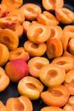 Fresh homegrown apricots halves Royalty Free Stock Photography