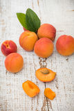 Fresh homegrown apricots on vintage white wooden tabl Royalty Free Stock Photography