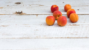 Fresh homegrown apricots on vintage white wooden table Royalty Free Stock Photography