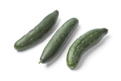 Fresh homegrown cucumbers. On white background Royalty Free Stock Photos