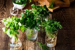 Fresh homegrown culinary and aromatic herbs. Selection of fresh homegrown organic culinary and aromatic herbs plant in glass jars on wooden background, home stock photos