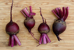 Fresh Homegrown Red Beets Royalty Free Stock Images