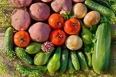 Fresh homegrown vegetables Royalty Free Stock Photography