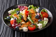 Fresh homemade appetizer salad with blueberries, feta cheese, ch. Icken, nuts, tomatoes and lettuce close-up on a plate on the table. horizontal royalty free stock images